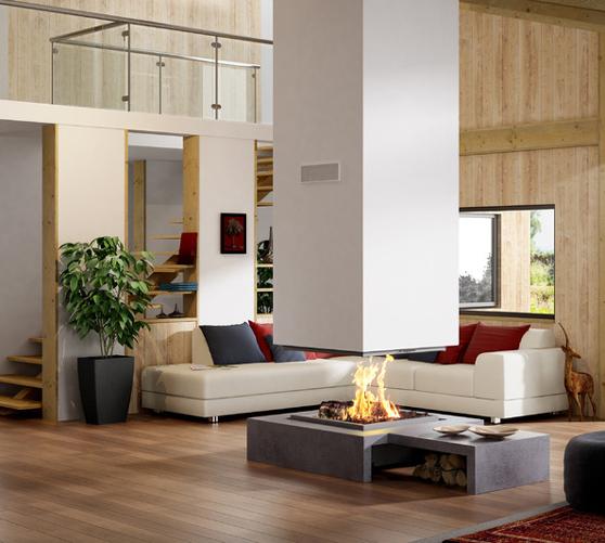 chemin es inserts les designers du feu. Black Bedroom Furniture Sets. Home Design Ideas